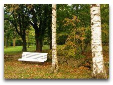 Парк Тойла-Ору: Уголок парка