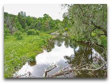 Парк Тойла-Ору: Река в парке