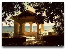 Парк Тойла-Ору: Беседка Ласточкино гнездо