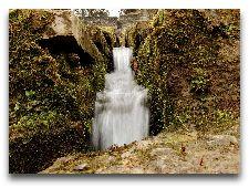 Парк Тойла-Ору: Водопад в парке