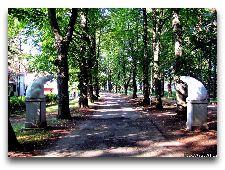 Парк Тойла-Ору: Подъездная липовая аллея