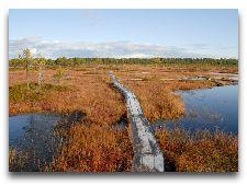 Достопримечательности рядом с Вильянди: Национальный парк Соомаа