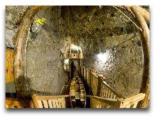 Соляная шахта Бохня: Камора 81