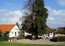 Город Свенборг: Собор в Роскилле
