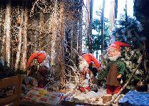 Tomteland -деревня Шведского Санта Клауса: Гномики