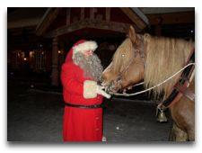 Tomteland -деревня Шведского Санта Клауса: Чудо кони