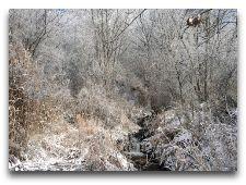 Тургеньское ущелье: фото
