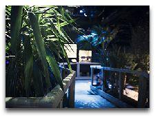 Научный центр Universeum: Комната, где живут ночные животные