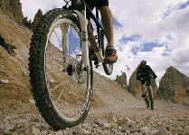 Зимние виды спорта: Горные велосипедыSki&Sun