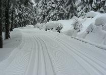 Зимние виды спорта: Маршрут для беговых лыж Ski&Sun
