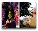 Бохня: Базилика Св.Николая