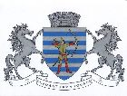 Бельцы: Герб города Бельцы