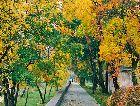 Бирштонас: Осень