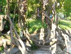 Боржоми: Боржомский парк