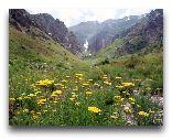 Чимган: Весна в Чимгане