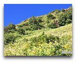 Чон-Кемин: Природный парк
