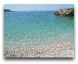Добра вода: Городской пляж 2008