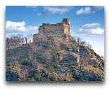 Еле́ня-Гу́ра (Цеплице): Замок Хойник