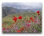 Фергана: Ферганская долина