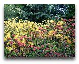 Хельсинки: Ботанический сад