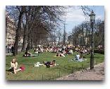 Хельсинки: Парк Эспланады