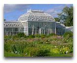 Хельсинки: Сиарейший павильон в Ботаническом саду университета
