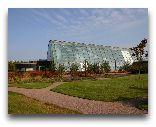 Хельсинки: Тропическая оранжерея Гардения