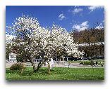 Крыница-Здруй: Весна