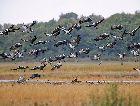 Национальный парк Лахемаа: Национальный парк Лахемаа