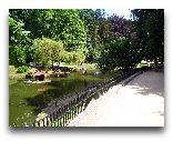 Львов: Стрыйский парк озеро с лебедями и фонтами