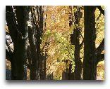 Львувек-Сленски: Осень