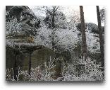 Львувек-Сленски: Узоры зимы