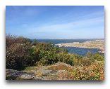 Марстранд: Природа