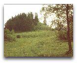 Отепяэ: Холм