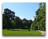 Паланга: Ботанический сад