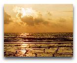 Паланга: Закат на море
