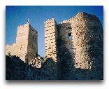 Раквере: Развалины замка на холме Валлимяги