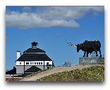 Раквере: Скульптура быка у замка