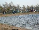 Остров Сааремаа: Пляж острова осенью
