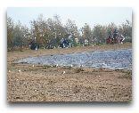 Остров Сааремаа: Пляж Осенью