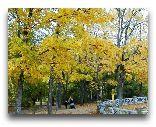Остров Сааремаа: Парк вокруг замка