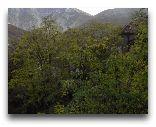 Шеки: Вид на горы Шеки