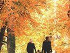 Сигулда: Осень в Сигулде
