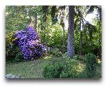Сверадув-Здруй: Природа