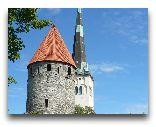 Таллинн: Башня и шпиль св. Олава