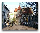 Таллинн: Улица Вилли