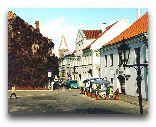 Тарту: Улица города