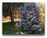 Ташкент: Вечный огонь