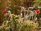 Тукумс: Весна
