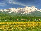 Ванадзор: Весна в горах